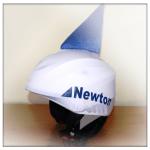 newton_kis